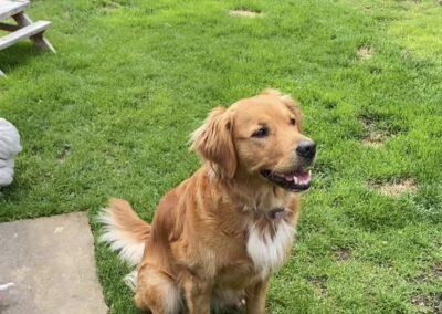 Meet Heidi from NAATA